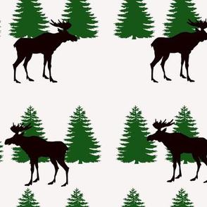 Moose Pine Trees