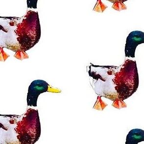 Painted ducks print (medium)