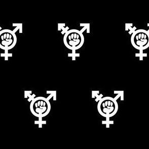 Transfeminism black