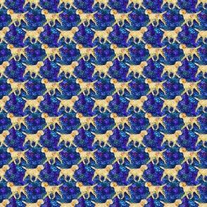 Cosmic trotting Border Terrier - night