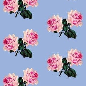 Vintage pink roses on blue