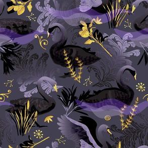 Black swans | charcoal purple