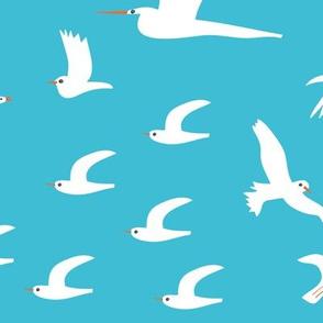Birds_turquoise_Solvejg