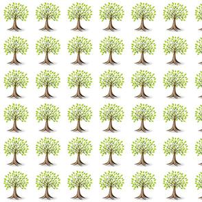 Genealogy History Family Tree