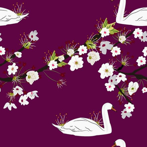 Sakura Swan - Rich Purple