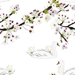 Sakura Swan - White