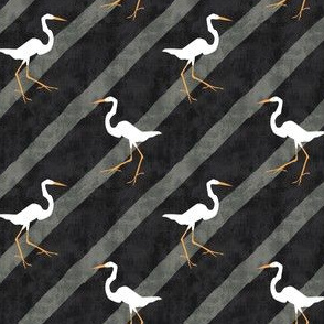 Egrets in the Crosswalk - Autumn Musick 2020
