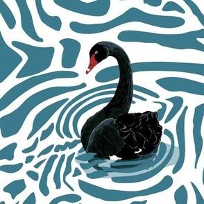Black swans on swirling water - white