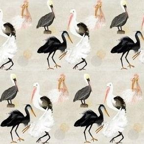 A BIRD PARTY