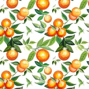 Orange Grove Garden