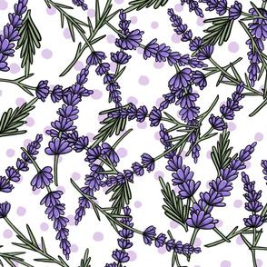 Lavender Fields - Dots