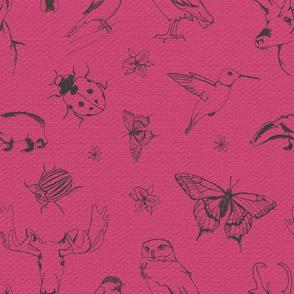 Woodland Wildlife - Pink