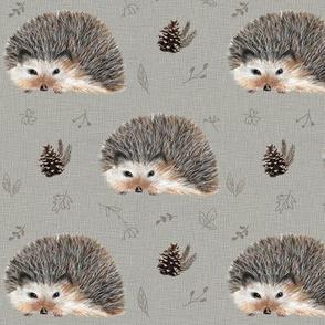 Baby Hedgehog MED