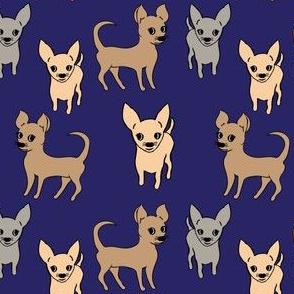 Chihuahua chihuahuas - navy