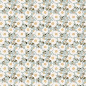 Apricot Blossoms 3.6x3.6