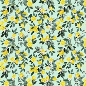 Dear Clementine teal lemons mint XS