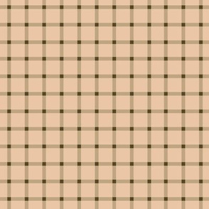 Peachy Brown Gingham 6x6