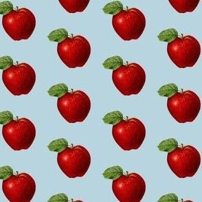 Red apple on light blue