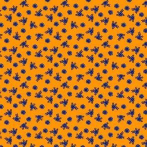 Small_Cornflower_Orange