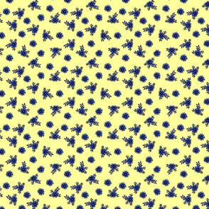 Small_Cornflower_Yellow