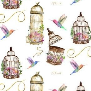 Birds Fly Birdcages