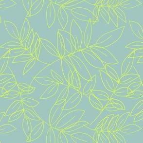 Leaves Eucaliptus M