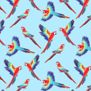 Red Macaws on Baby Blue (Small Version - Coordinate Pattern)