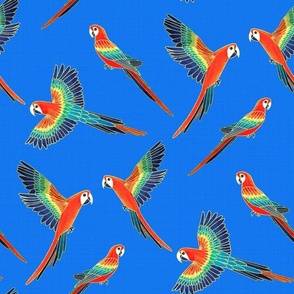 Red Macaws - Electric Blue  (Large Version - Coordinate Pattern)