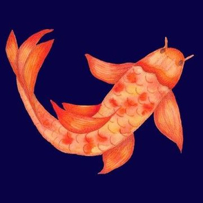 Goldfish on Navy Background