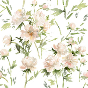 Watercolor Peonies and floral stems