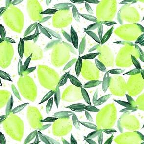 Lime essence - watercolor citrus for summer - yellow lemons zest 316