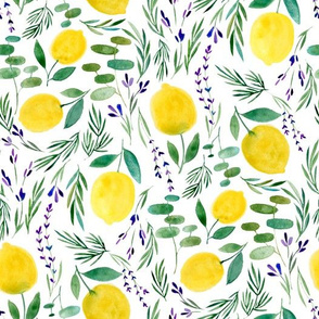 Citrus Limon XS - © Lucinda Wei