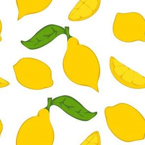 Meyer Lemons on White