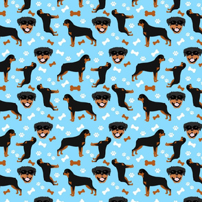 Rotties in Blue - Large Scale