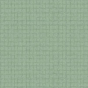 Distressed Weave: Dusty Green Texture