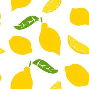 Meyer Lemons on White 2