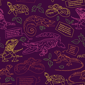 Brightly Colored Reptiles // Neon Crocs, Snakes and Turtles
