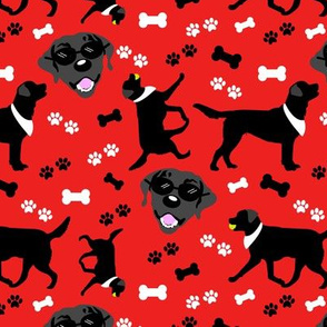 Black Lab Faces in Red