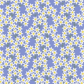 Lea Small Floral: Periwinkle Blue & White Small Print