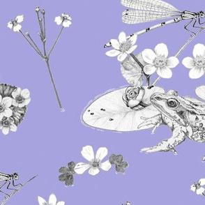 Frog in his Pond violet