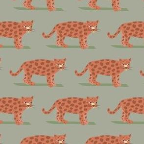 Little Jaguars