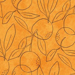 Outline oranges