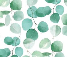 Watercolor Eucalyptus Leaves Pattern