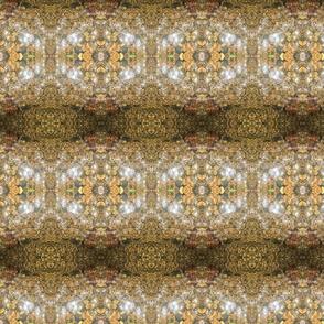 Crawdad Kaleidoscope