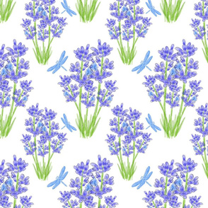 Lavender and Dragonflies