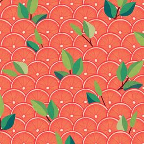 Pink Grapefruit Slices by ArtfulFreddy