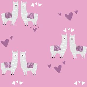 Purple Lama Love