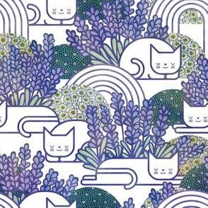Lavender Field Medium