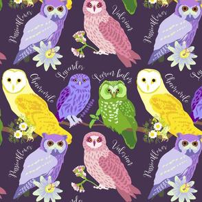 Sleepytime Owls