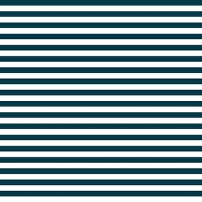 Nautical Blue Stripes